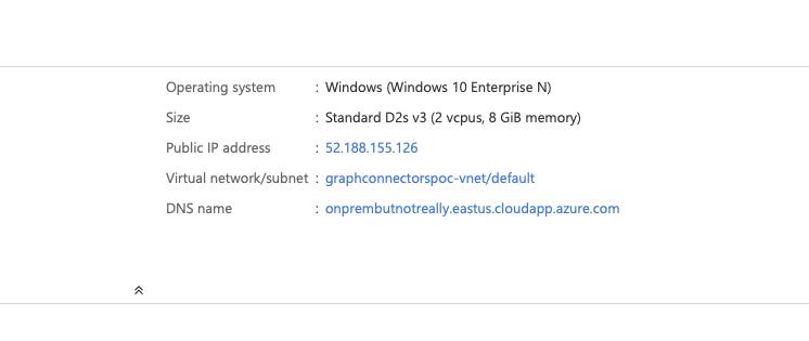 VM IP and DNS